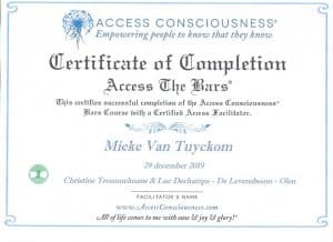 Acces bars voor kinderen. Diploma access bars